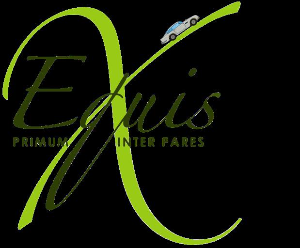 La Carrera Panamericana Equis Logo